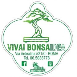 Bonsaidea.it